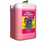FloraBloom - 6 Gallon (22,7 Litros)