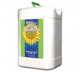 Liquid KoolBloom - 6 Gallon (22,7 Litros)