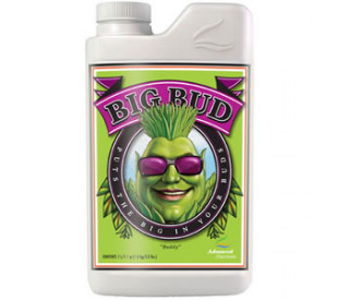 Big Bud - 500ml