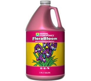 FloraBloom Galao