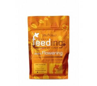 Green House Feeding Short Flowering