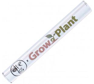 Piteira de Vidro GrowPlant
