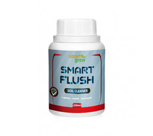 Smart Flush